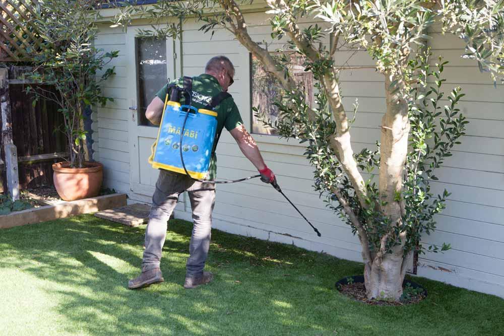 artificial grass maintenance in sussex