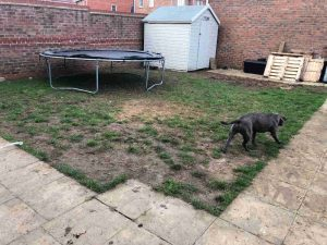 Improving New Build Gardens   Sussex Artificial Grass Company